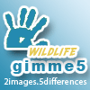gimme5 - wildlife