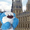 Blue Bear – Find the Difference